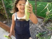 Red corn? A-maize-ing! | Gardening with Children to Healthy Nutrition | Scoop.it