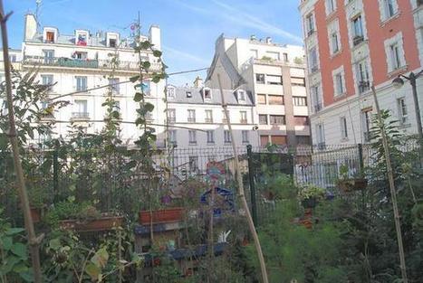 Les jardins partagés à Paris | Les colocs du jardin | Scoop.it