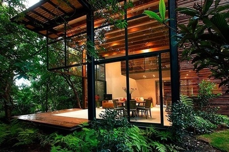 Treehouse architecture in Mexico | sustainable architecture | Scoop.it