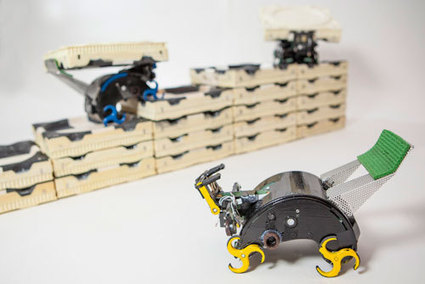 Tiny Robots Mimic Termites' Ability to Build without a Leader | digimap | Scoop.it