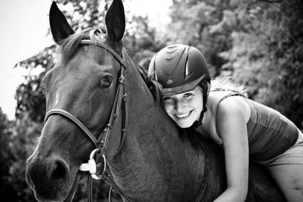 WELCOME | horses | Scoop.it