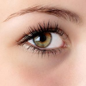 Do Eyelashes Grow Back? : Truths and Facts about Eyelashes | Best Makeup & Beauty Tips | Scoop.it