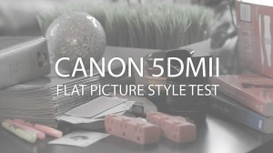 Canon 5DMII – Flat Picture Style Test - Tyler J. Clements | Everything Photographic | Scoop.it