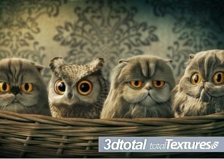3D Total Textures Vol.15 Release 2.1: Toon Textures » SoftsDl.net ... | Machinimania | Scoop.it