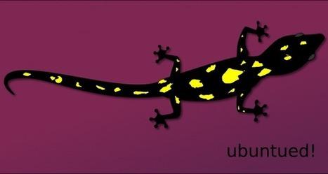 Ubuntu - Alpha 1 Testing (Saucy Salamander) disponible | ubuntu | Scoop.it