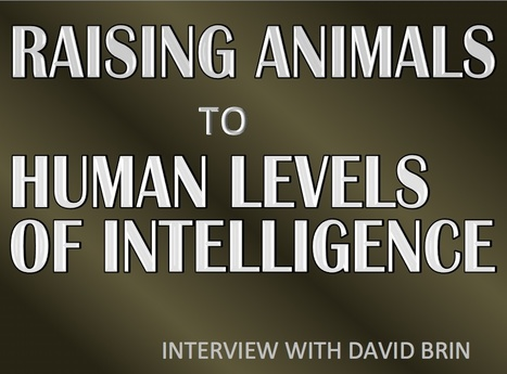 Too Hard For Science? David Brin – Raising Animals to Human Levels of Intelligence | David Brin's Uplift Universe | Scoop.it