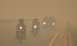 """Indonesia's fires labelled a 'crime against humanity' as 500,000 suffer (""""the damage is staggering"""") 