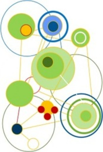 'Superorganisations' – Learning from Nature'sNetworks | Collaborationweb | Scoop.it