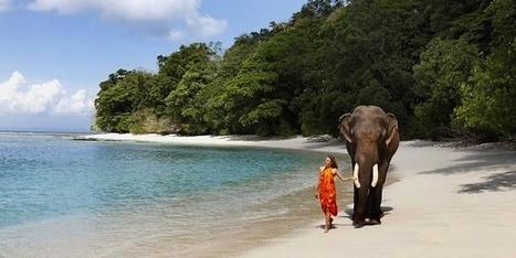 2 Nights Andaman Tours : Best Indian Beaches   mangalamtourism.com   India Tours   Scoop.it