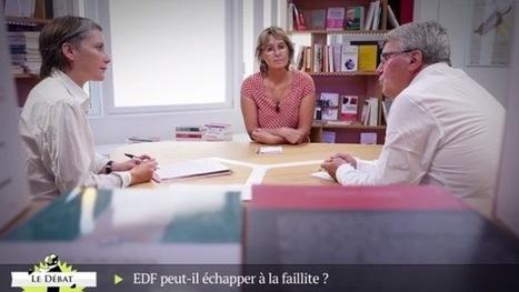 «EDF s'enferre dans un modèle dépassé et inadapté» | TRANSITURUM | Scoop.it