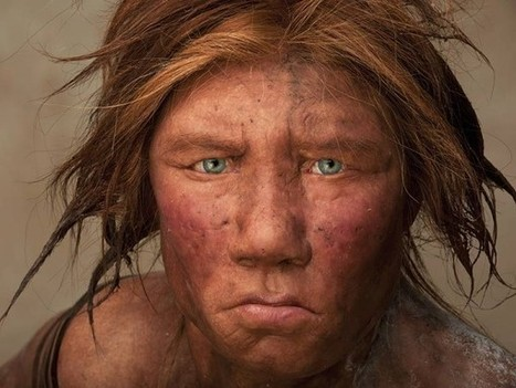Which Genes Did We Get From Neandertals? | Human Evolution | Scoop.it