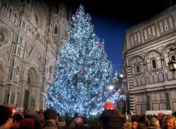 Firenze illumina il Natale con l'albero di Campiglio | Tuscany and its food | Scoop.it