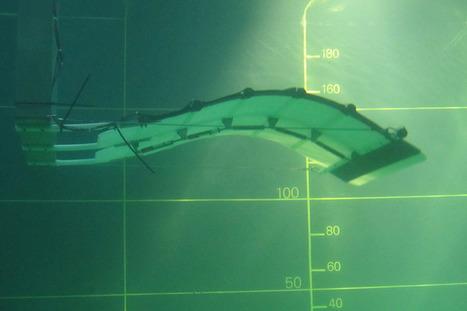 Une hydrolienne qui imite le mouvement des poissons | Innovation & Utilities | Scoop.it