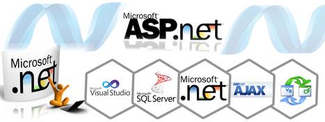 Top Ten Web Development Company in Gurgaon | ASP .Net Development | Delta Web Services | Delta Web Services | Scoop.it