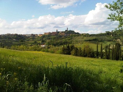 Special Programme - Sightseeing in Toscany - Mondolingua | Holiday in Pisa | Scoop.it