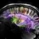 Via Slate : Le cerveau peut se soigner tout seul | Cerveau intelligence | Scoop.it