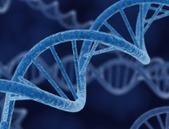 Scientists find new gene fault behind ovarian cancer | esperity | Scoop.it