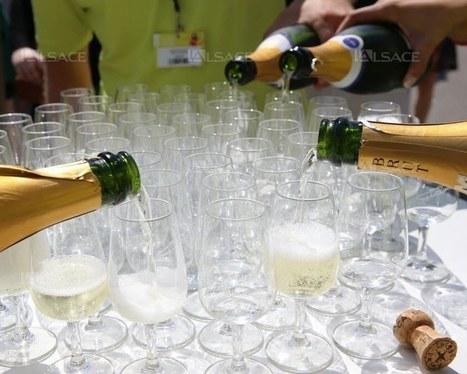 Exportations vers les États-Unis et le Canada en augmentation de 30% pour le Crémant d'Alsace | Le Vin et + encore | Scoop.it