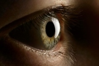 What Your Eyes Say About Who You Are   Cognitive Science   Scoop.it
