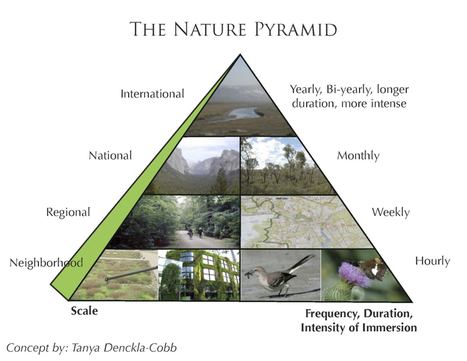 Exploring the Nature Pyramid | The Nature of Cities | Arrival Cities | Scoop.it