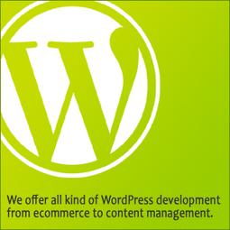 Wordpress Design and Development Company Louisville, USA | Medical Billing Company USA | Scoop.it