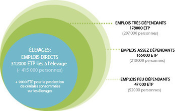 INRA - Une étude inédite permet de chiffrer les emplois liés à l'élevage français | Elevage Laitier ~ PYB | Scoop.it