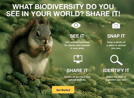 From Snapshot to Science: Photos of Biodiversity as Useful Records | GarryRogers Biosphere News | Scoop.it
