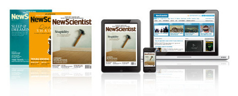 Super-organs: building body parts better than nature - 24 July 2013 - New Scientist | Knowmads, Infocology of the future | Scoop.it