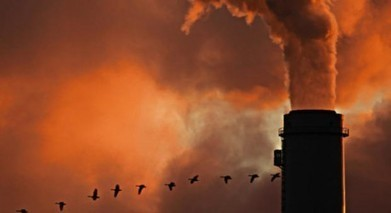 Inaction on climate could cost US $150bn a year | Eco News | Managing the Transition | Scoop.it
