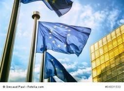 (MULTI) EU's multilingual thesaurus glossaries for free download | EU Translation | Scoop.it