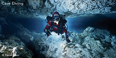 Scuba Diving in Dominican Republic - Scuba Dive Year-Round - Divers' Reviews | Diving Destinations | Scoop.it