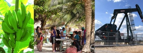 The Belize Economy - A Review and Comparison of 2011 / 2012 economy | Belize in Social Media | Scoop.it