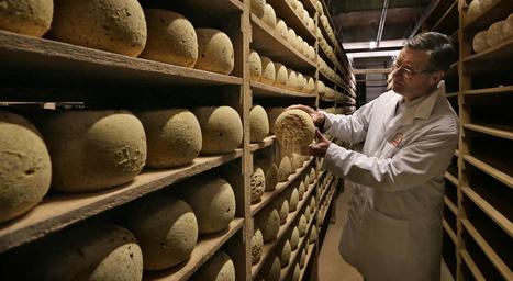 César Losfeld, à Roubaix : le fromage s'affine dans les anciennes caves du textile | The Voice of Cheese | Scoop.it