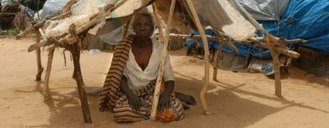 UNHCR - Refugees   Global challenges   Scoop.it