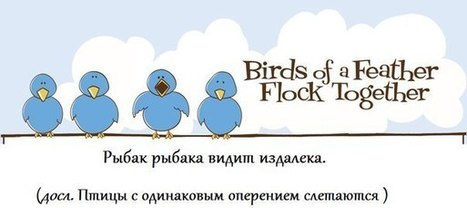 A bird of feather flock together | Visual English | Scoop.it