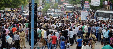 Inde : les cadavres de vaches s'accumulent à l'ouest du pays   Nature to Share   Scoop.it