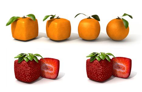 OGM: UE ferma le coltivazioni fino al 2014 | Il mondo che vorrei | Scoop.it