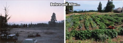 British Columbia Man Faces Six Months in Jail for Growing Food | Food issues | Scoop.it