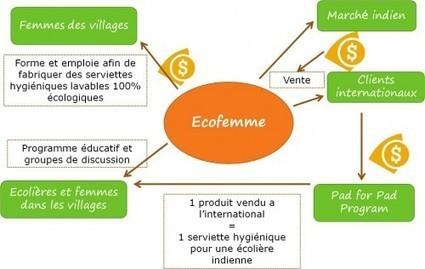 Ecofemme, des serviettes hygiéniques lavables, sociales et écologiques | économie inspirée du vivant | Scoop.it