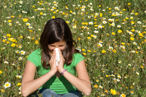Explainer: what is hay fever and why do you have it? | Beat Allergic Rhinitis and Allergies Naturally | Scoop.it