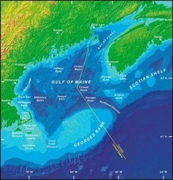 Closed areas can decrease uncertainty in effects of climate change on New England Fisheries   Fisheries and coastal communities   Scoop.it