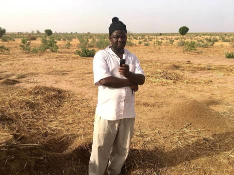 Senegal's farmers adopt new tool to boost harvests: mobile phones | Thomson Reuters Foundation News | CGIAR Climate in the News | Scoop.it