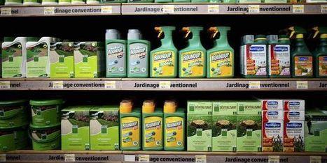 Le vote sur l'autorisation du glyphosate en Europe a été ajourné   Nature & Health   Scoop.it