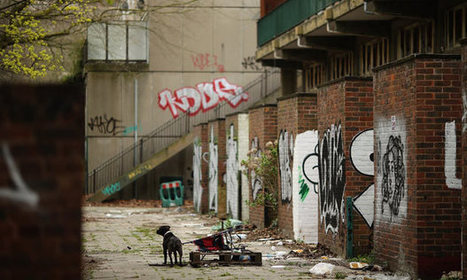 Poverty saps mental capacity to deal with complex tasks, say ... | Teens And Poverty | Scoop.it
