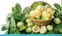 Garcinia cambogia weight loss results!   Wonders of weight loss motivation   Scoop.it
