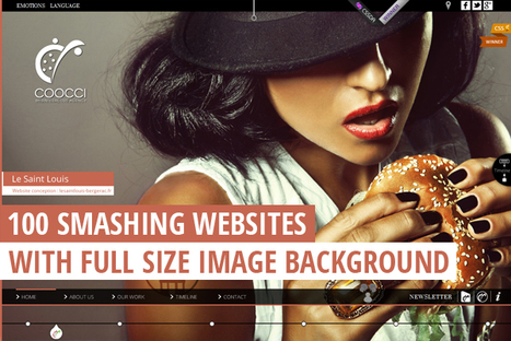 100 Smashing Websites with Full Size Image Background | Design Web Kit | responsive design II | Scoop.it