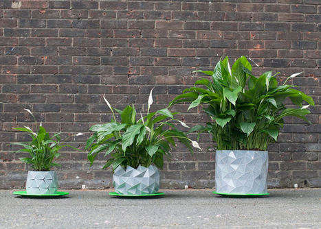 Studio Ayaskan's Growth plant pot expands with its occupant | What's new in Design + Architecture? | Scoop.it