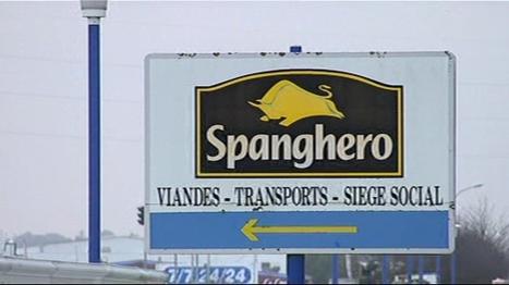 VIDEO. Spanghero : le mouton prohibé vient du même trader que la viande de cheval - Economie - MYTF1News | Nature Animals humankind | Scoop.it