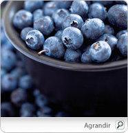 Les bienfaits du Bleuet, champion des antioxydants, sur la santé