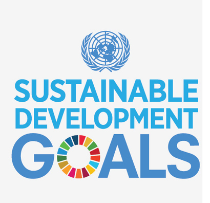 Sustainable development goals - United Nations | HEALTH SYSTEMS AND HEALTH CARE DELIVERY | Scoop.it